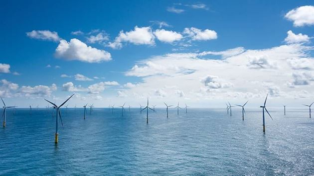 Diagnostic services for wind turbines