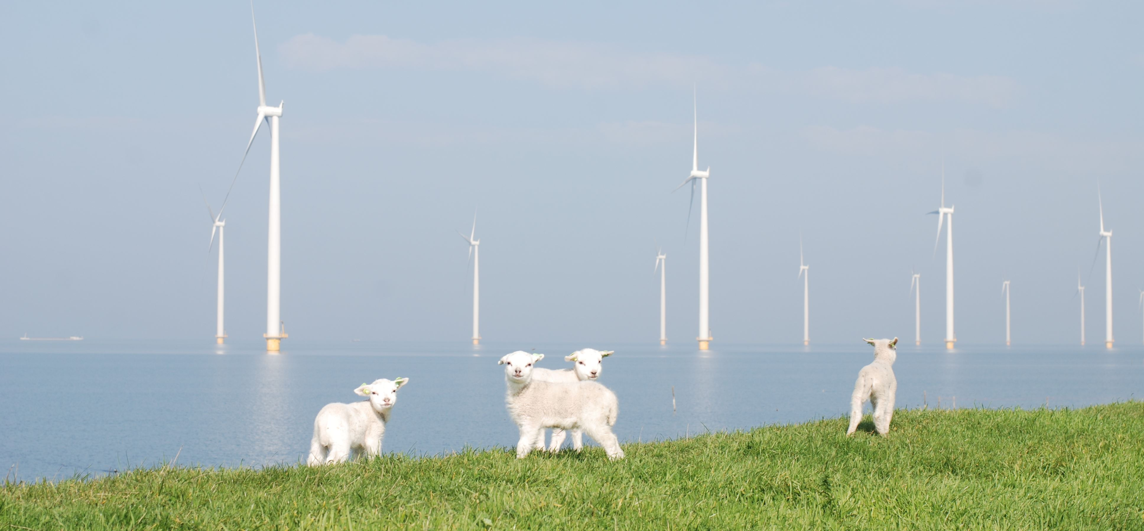 Dutch wind power plants by Siemens Gamesa