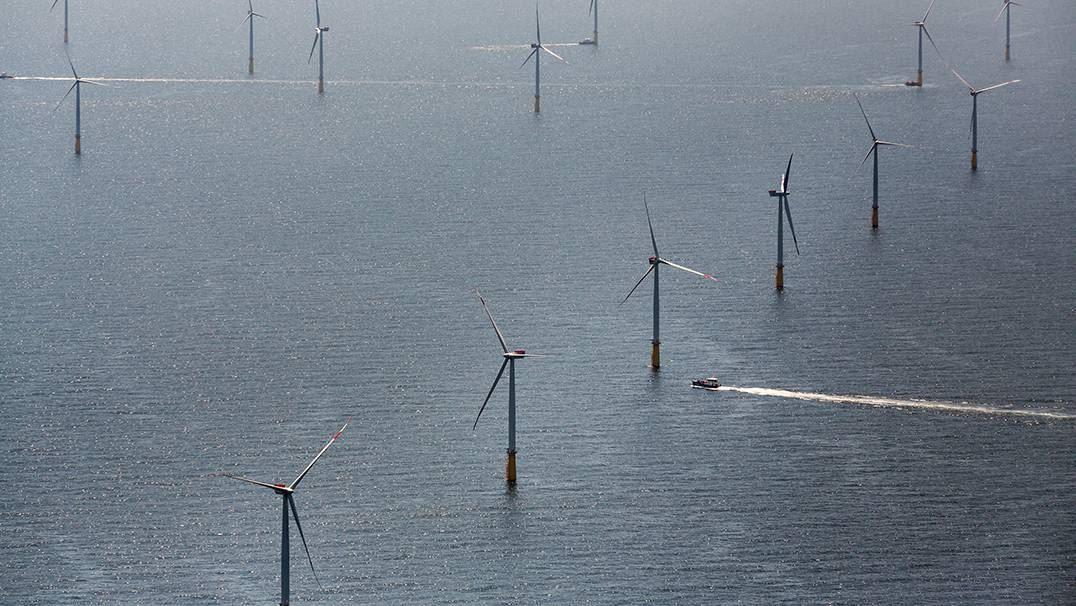 DanTysk offshore wind power plant